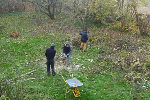 Gartenarbeit während der Bauwoch Herbst 2011 im Falsterhus