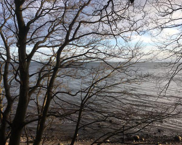 Blicks aufs Meer, die Ostsee, bei Skjoltrup